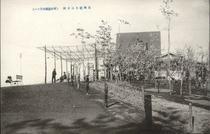 長岡悠久山公園 (東山遊国地其ノ一)