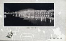高田城趾の夜桜
