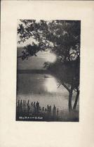 新潟信の川夕照と柳