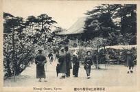 京都御室仁和寺境内の桜 Ninnaji Omuro, Kyoto.