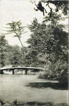 官幣大社 伊弉諾神社 神苑